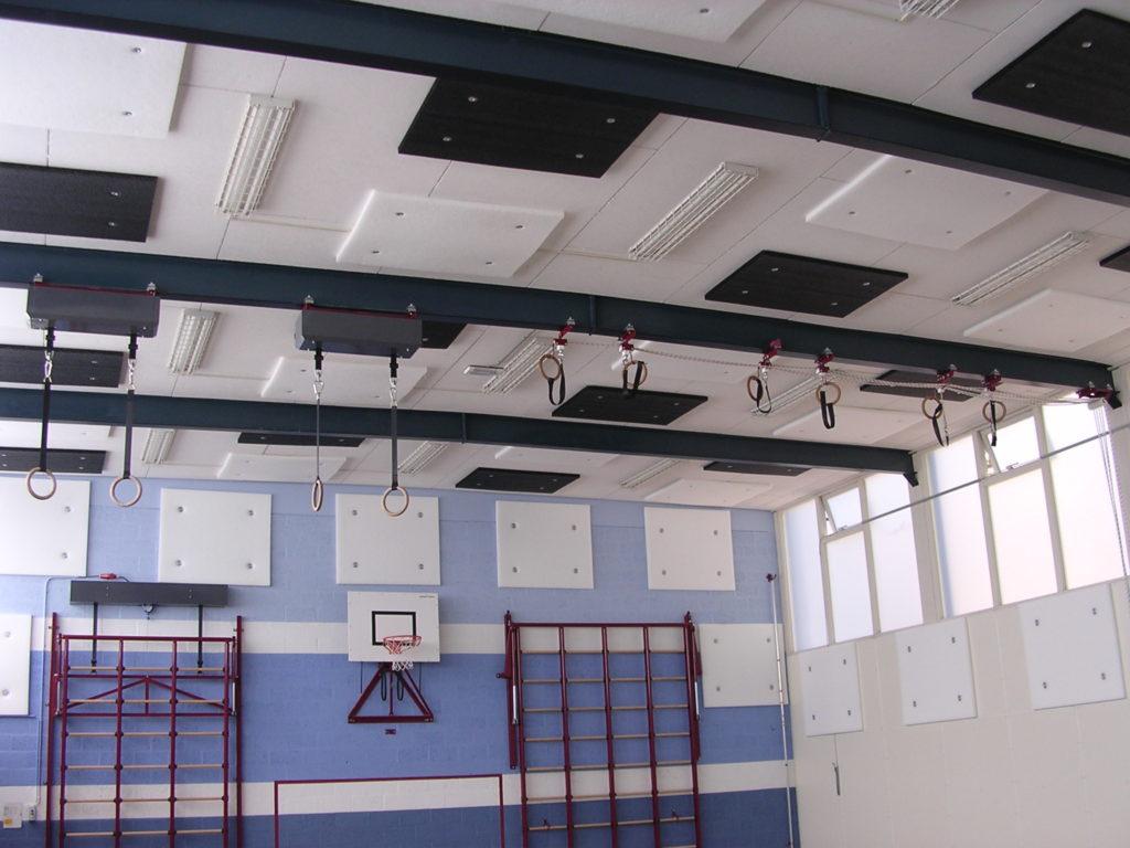 Voorbeeld van Gymzaal met geluidsabsorptie